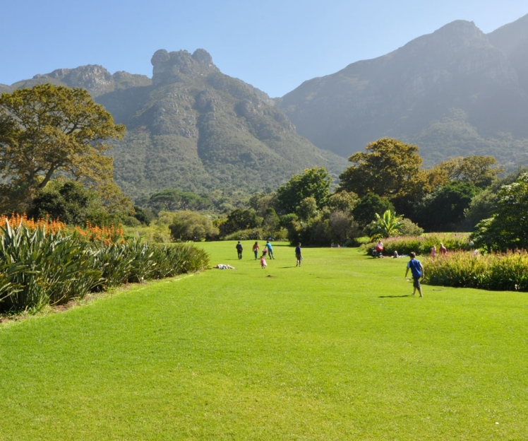 ct-big-7-kirstenbosch-winter-1024x855